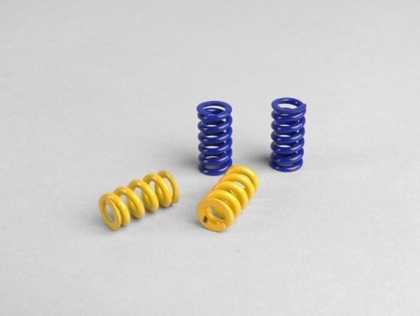 Kupplungsfedern -POLINI Evolution 3 G2- für Polini G2 Kupplung