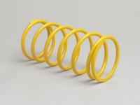 Gegendruckfeder -MALOSSI- Rotax 125-150 ccm