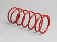 Gegendruckfeder -MALOSSI Racing- Piaggio 50 ccm (Typ Sfera 1)
