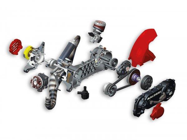 "Motor komplett (nicht zusammengebaut) -MALOSSI RC-One- GILERA/PIAGGIO lang 50ccm2T AC/LC ohne E-Start, 12/13"""