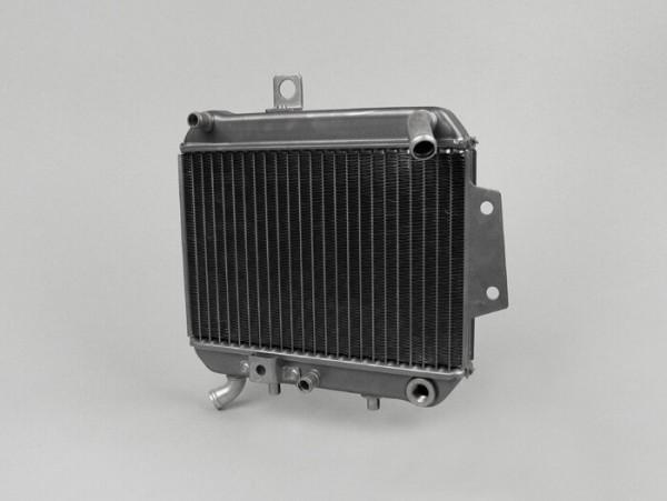 Radiator -PIAGGIO- Gilera DNA 125-180