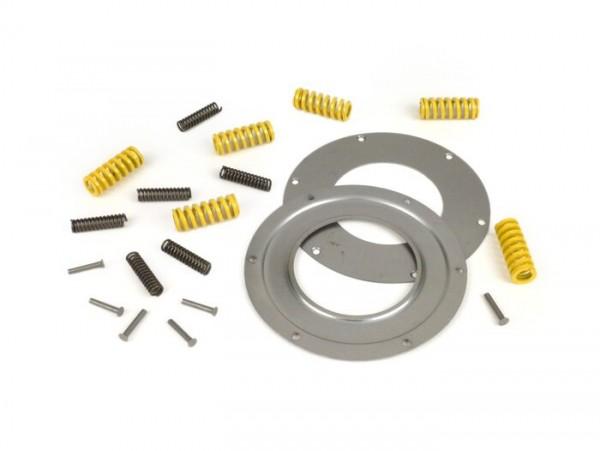 Primary gear repair kit -DRT 12 springs (reinforced)- PX200, Cosa, T5 125cc, Rally180 (VSD1T), Rally200 (VSE1T), GS160 / GS4 (VSB1T), SS180 (VSC1T)