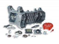 Motorgehäuse -MALOSSI C-One- Minarelli lang 50ccm2T AC/LC ohne E-Start