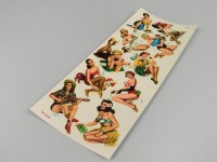 Adesivi ad acqua -MOSCA PIN UP 5- Bogen 34x15cm