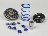 Variator-Kit -POLINI Speedcontrol 9 Rollers- Piaggio 250-300 cc Quasar (since 2006), Leader 200 cc