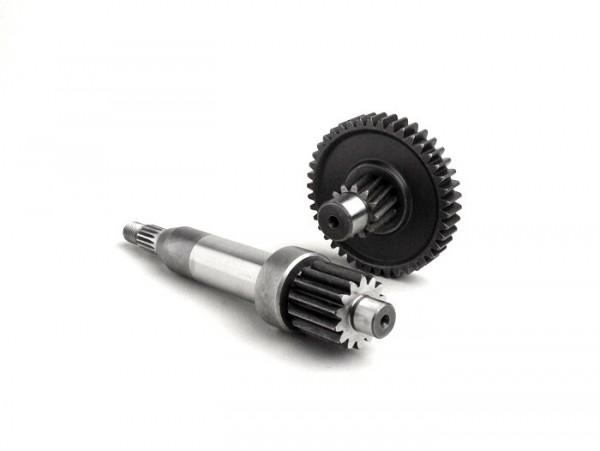 Getriebe primär -BGM- Derbi 50 ccm (Typ Hunter)- 14/42 = 1:3,00