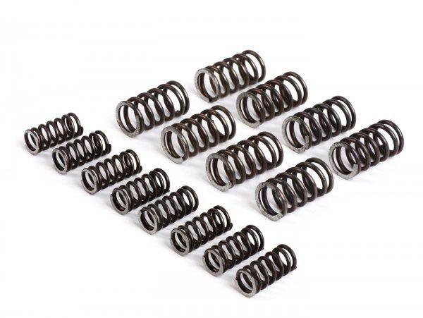 Kupplungsfeder-Set für Kupplung -FABBRI RACING (XXL)- Vespa V50, V90, SS50, SS90, PV125, ET3, PK50, PK80, PK50 S, PK80 S, PK125 S, PK50 XL, PK125 XL, ETS, PK50 HP, PK50 SS - 16 Stück