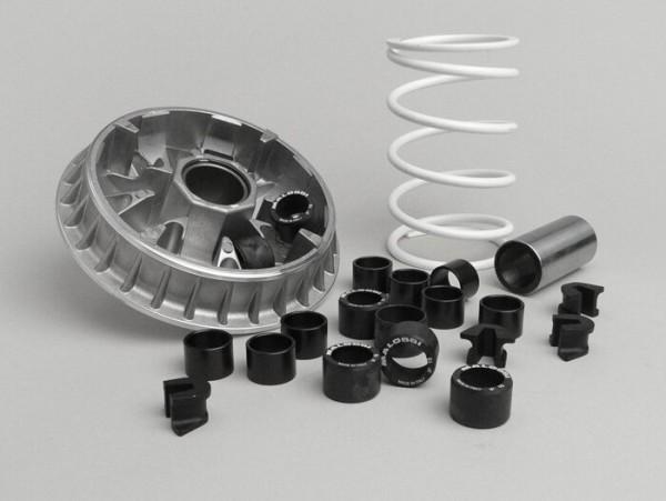 Variomatik -MALOSSI Multivar 2000- Piaggio Master 400-500 ccm (ab Bj. Mai 2004) - 25x17mm (8x 15gr)