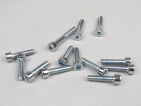 Engine screw set -TNT- Minarelli - chrome