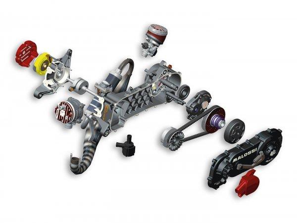 "Motor komplett (nicht zusammengebaut) -MALOSSI C-One- GILERA/PIAGGIO 50ccm2T AC/LC ohne E-Start, 10"""