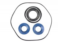 Oil seal set engine -OEM QUALITY- Vespa V30, V33