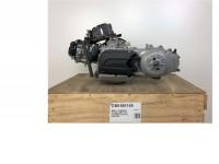 Engine -PIAGGIO- Piaggio MP3 125 Yourban 4-stroke 4V LC, ERL 2011 (ZAPM71100)