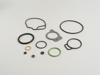 Kit de juntas para carburador -DELLORTO- PHVB 20,5 - p.ej. Piaggio SKR125/150, Runner 125/180 FX/FXR