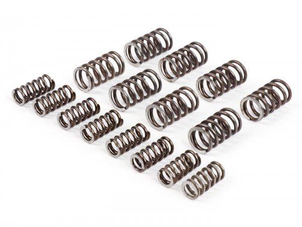 Kupplungsfeder-Set für Kupplung -FABBRI RACING top r (XXXL)- Vespa V50, V90, SS50, SS90, PV125, ET3, PK50, PK80, PK50 S, PK80 S, PK125 S, PK50 XL, PK125 XL, ETS, PK50 HP, PK50 SS - 16 Stück