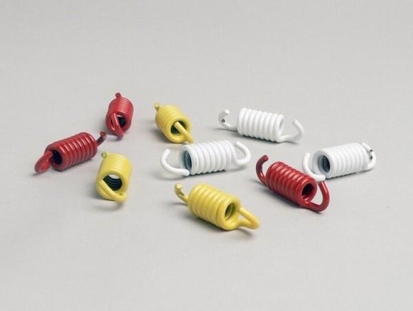 Kupplungsfedern -MALOSSI- Rotax 125-150, Piaggio 125-200 ccm Leader, Piaggio 250 ccm Quasar/HPE, Piaggio 300 ccm Quasar/HPE, Piaggio 500 ccm Master (bis Bj. 04.2004), Honda 125-150 ccm 2-Takt, Honda 250 ccm (Typ CN), Kymco 125-150 ccm