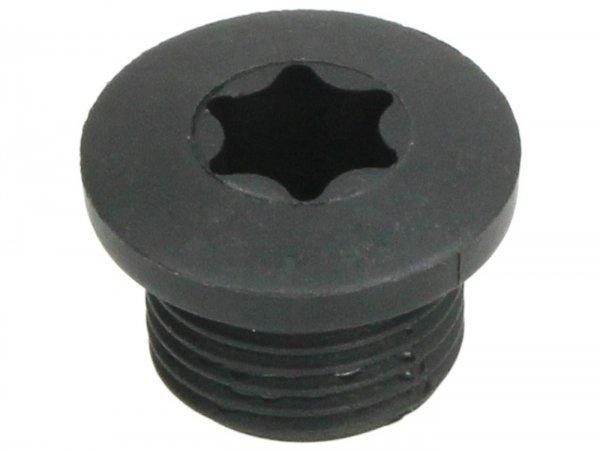 Verschlussschraube für Wasserpumpendeckel -PIAGGIO- Vespa GT 250 (ZAPM45102), Vespa GTS 250 (ZAPM45100, ZAPM45101), Vespa GTS 300 (ZAPM45200, ZAPM45202, ZAPMA3300), Vespa GTS HPE 300 (ZAPMA3600, ZAPMD310), Vespa GTS Super 125 (ZAPM45300, ZAPM45301),