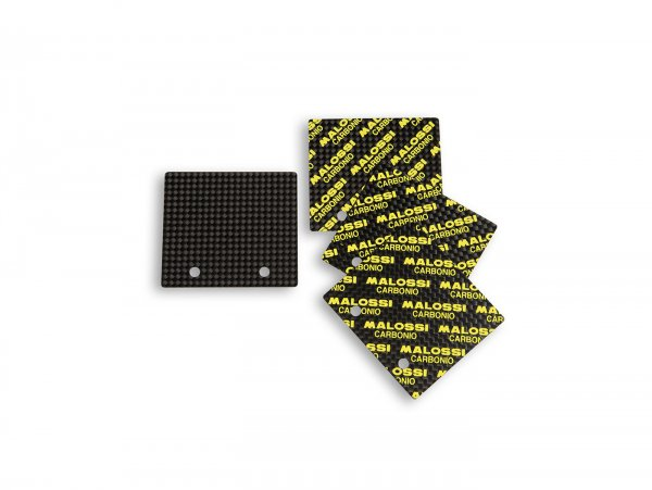 Láminas -MALOSSI 0,23-0,28mm 45° VL18 Carbon/Carbonio-