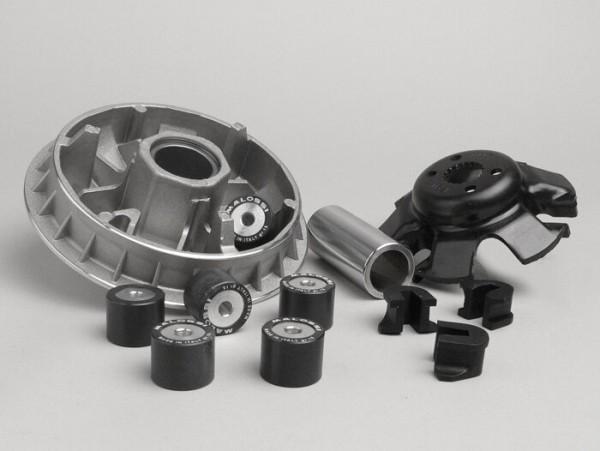Variomatik -MALOSSI Multivar 2000- Suzuki 250 ccm (Typ Burgman AN)