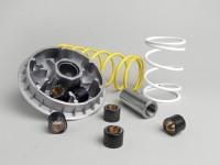 Variator-Kit -MALOSSI Multivar 2000- Honda 250 cc (type FES)