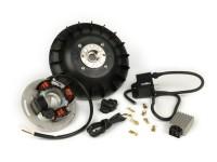 Zündung -PINASCO Flytech 12V- Vespa Rally180 (VSD1T), Vespa Rally200 (VSE1T - 33996, Femsatronic) - 1600g