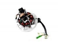 Zündung -BGM ORIGINAL Grundplatte- CPI 50 ccm (Euro 2, 6 Kabel) - Version 1 (1x Einzelstecker, 2x Kombistecker)